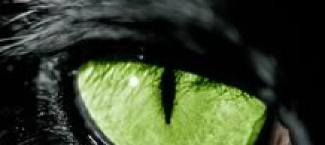 Un occhio alla finale scudetto